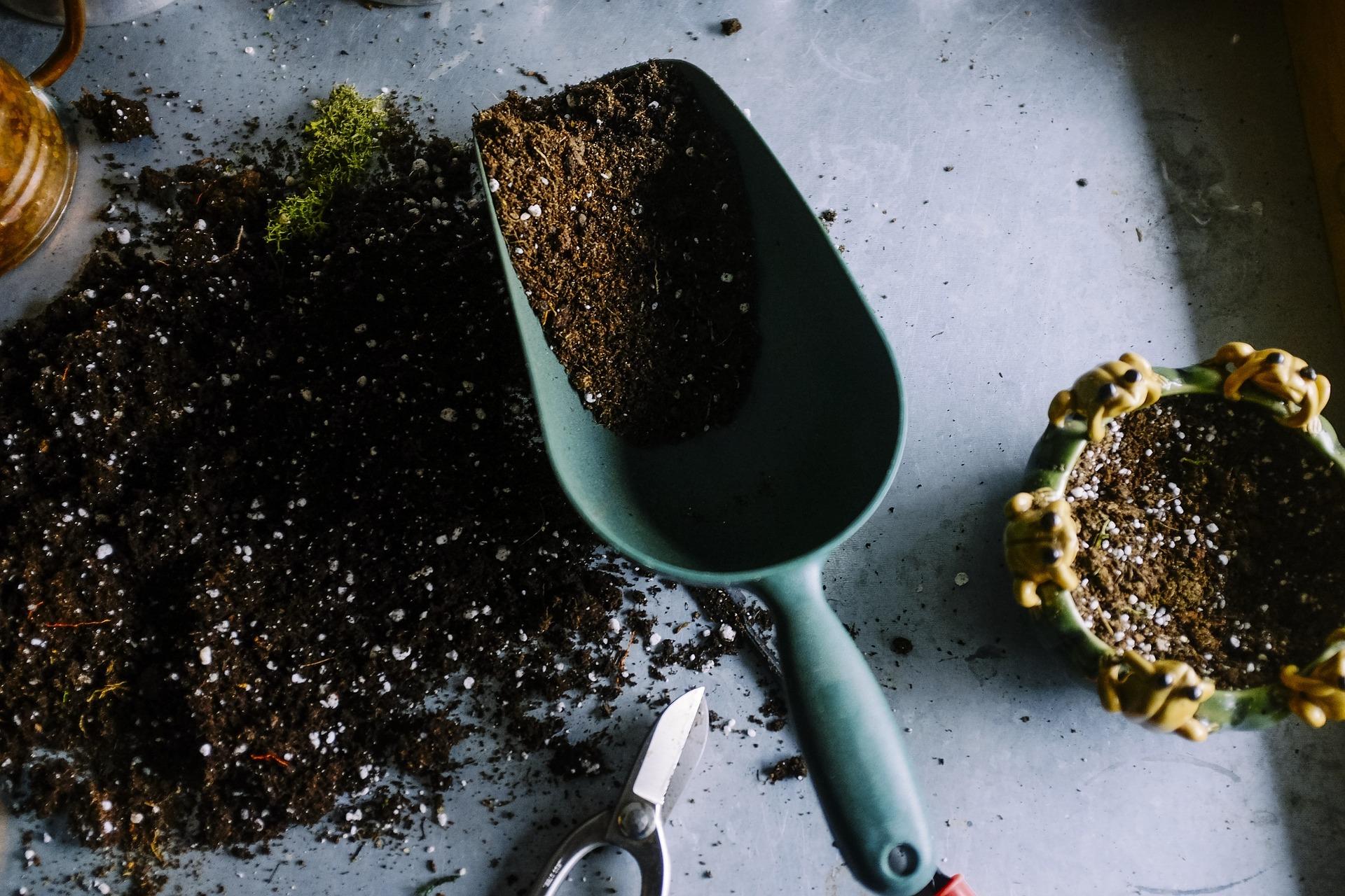 Cheap Potting Soil